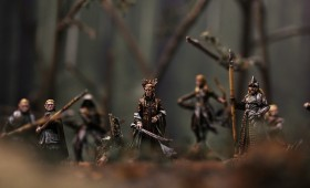 Wood-Elves of Mirkwood
